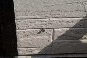 外壁塗装とは・・・窯業系サイディング壁の劣化