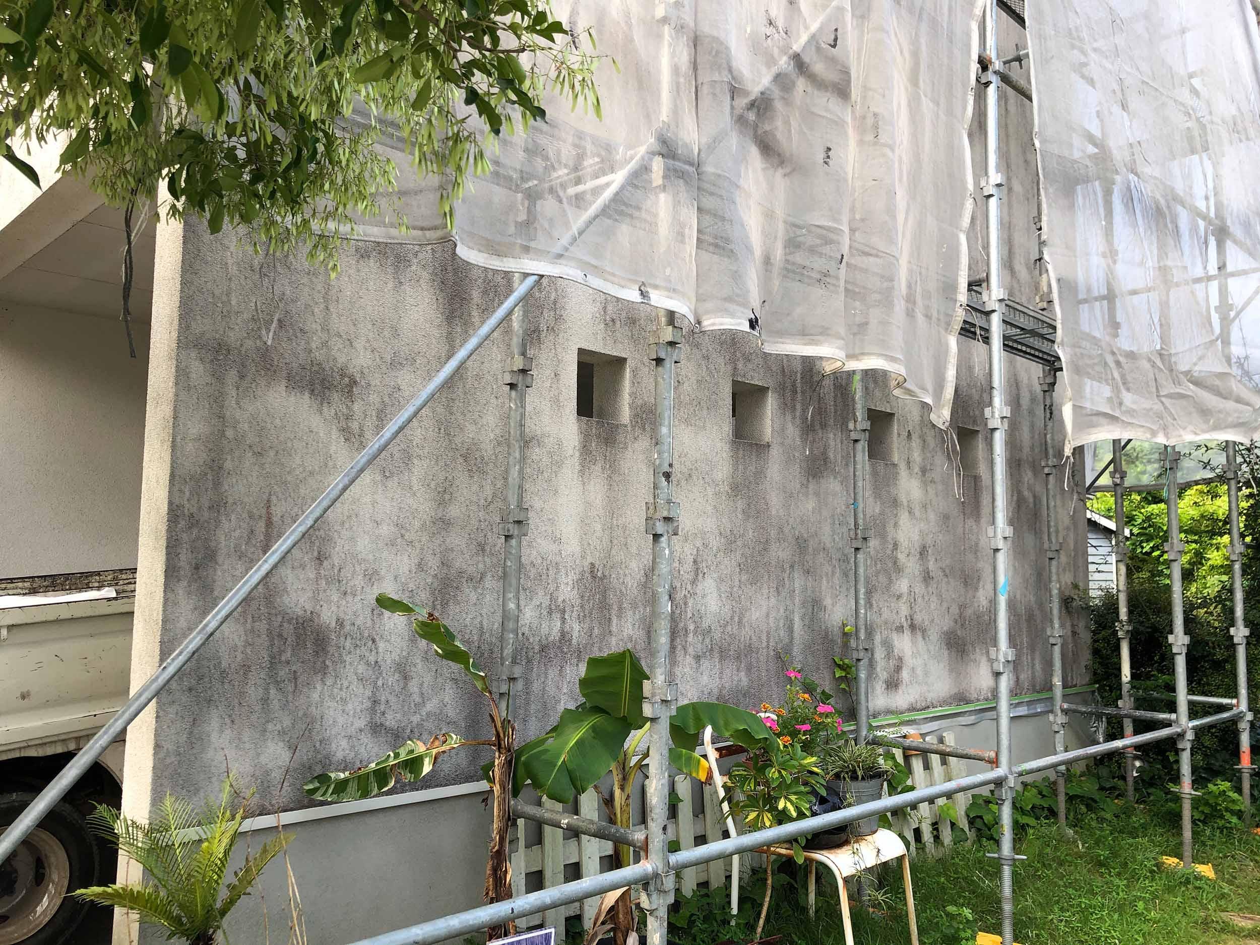 カビ・藻の除去作業
